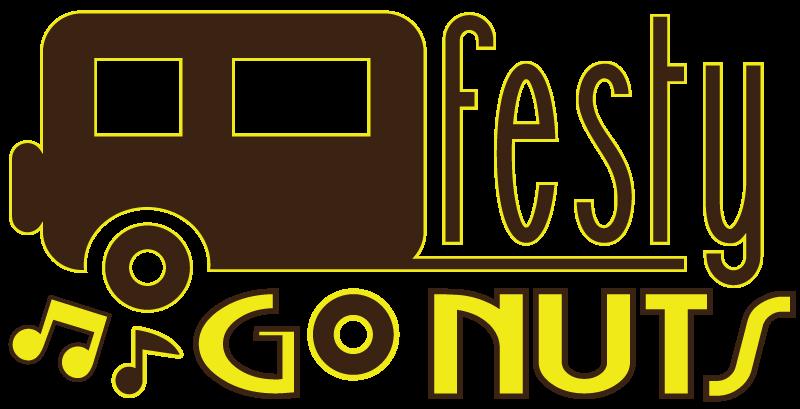 Music Festival Guide