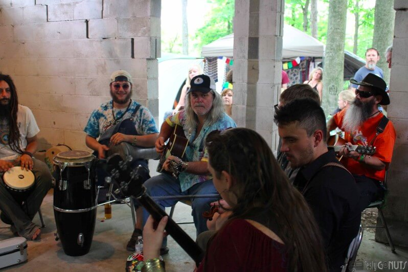 John Hartford Memorial Festival 2016 -55