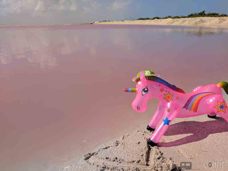 Neil with the Pink Waters at Las Coloradas