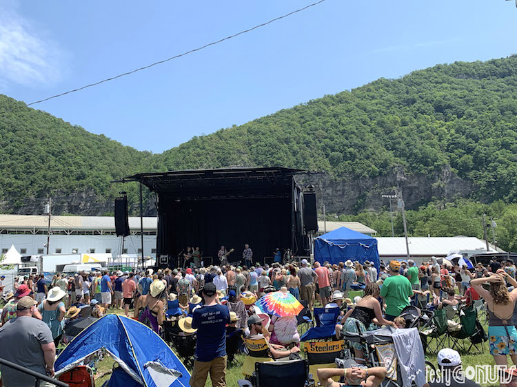 The crowd at Delfest 2019