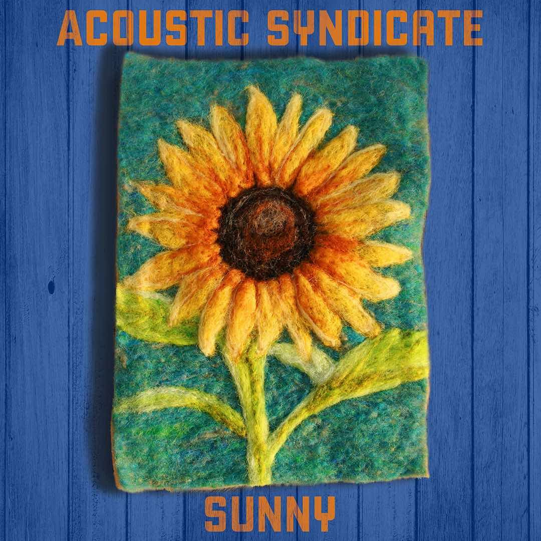 Acoustic Syndicate - Sunny